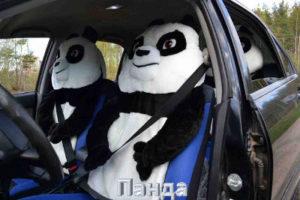Чехлы Панда