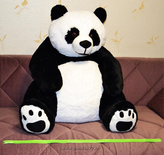 Большая Панда фото 1