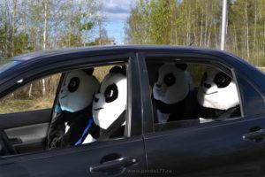 Купить чехлы Панда