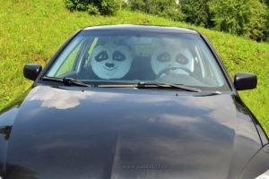 Чехлы Кунг-фу Панда на автомобиле